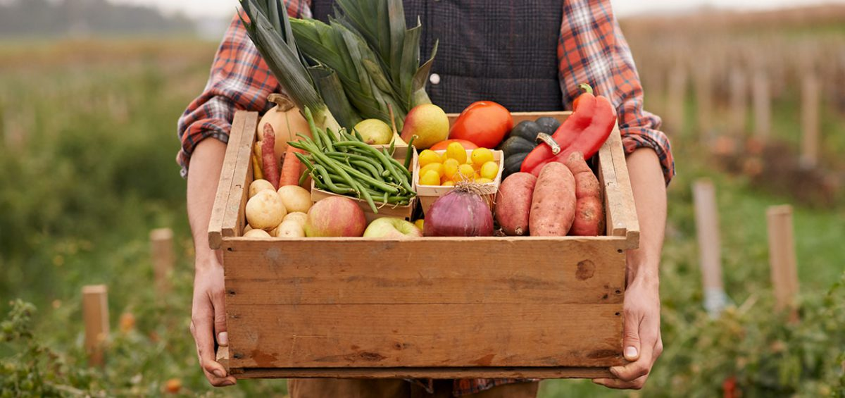 Meal kits farmer food crate
