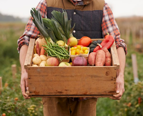 Meal kits farmer food crate
